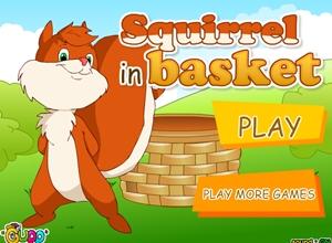 เกม Squirrel in basket