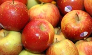 ปวดข้อให้กินแอปเปิล แกล้มด้วยเหล้าไวน์แดงวันละแก้วทุกวัน