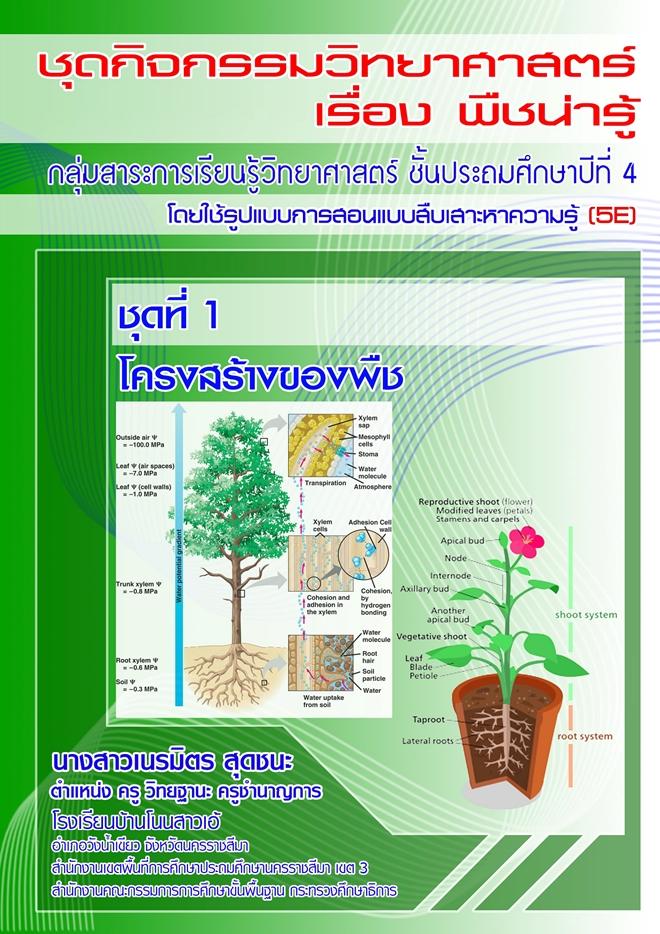 ชุดกิจกรรมวิทยาศาสตร์ ม.4 เรื่อง พืชน่ารู้ ผลงานครูเนรมิต สุดชนะ