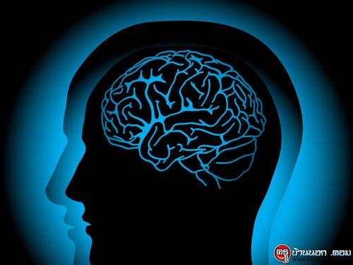 สมองที่ไร้ข้อมูล ความรู้และความคิด