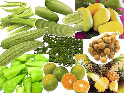สรรพคุณของพืชผัก