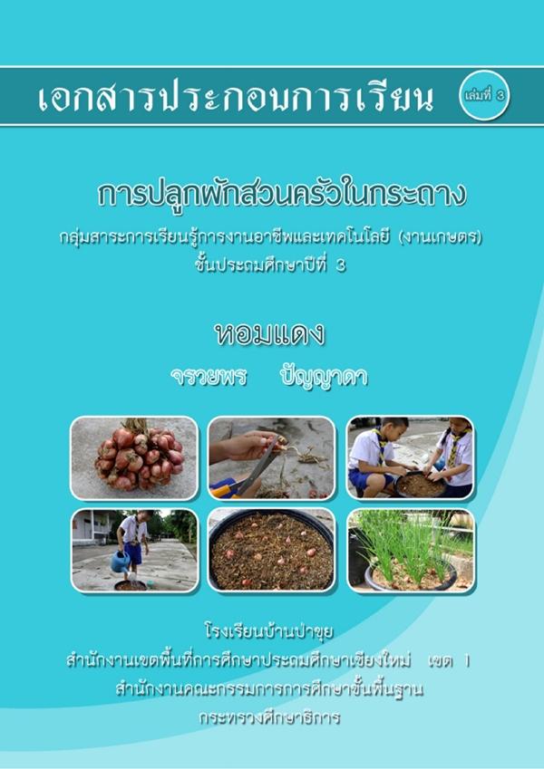 """เอกสารประกอบการเรียนการปลูกผักสวนครัวในกระถาง """"หอมแดง"""" ชั้น ป.3 ผลงานครูจรวยพร ปัญญาดา"""