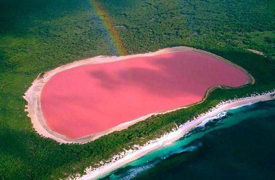 เลค ฮิลเลอร์ ทะเลสาบสีชมพู ประเทศออสเตรเลีย