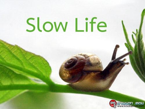 ใช้ชีวิต Slow Life เพื่อความสุขยืนยาว ช้าแต่ชัวร์!!