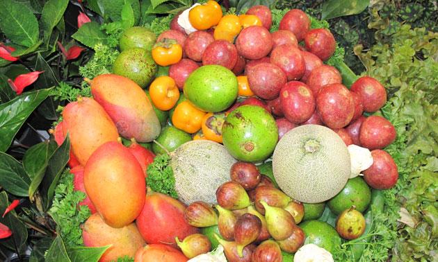 โครงการหลวง 40 ชูไฮไลต์ พืช-ผลไม้ เพื่อสุขภาพ