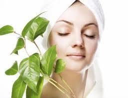 6 ตำรับธรรมชาติ เพื่อผิวสวยใส ไร้สารเคมี