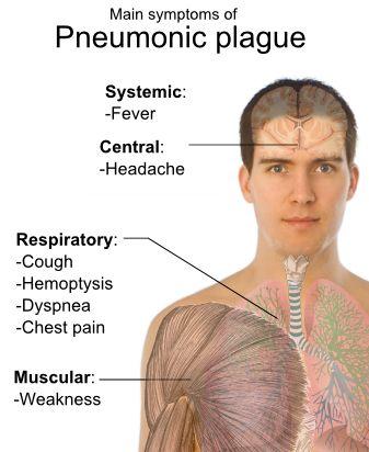 กาฬโรคปอด Pneumonic Plague