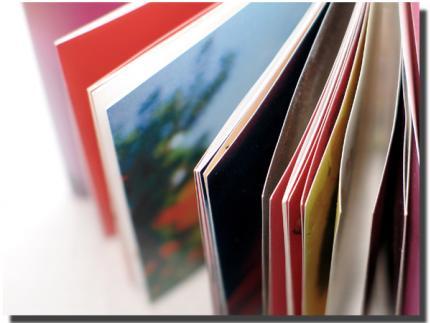 7 รายชื่อ นวนิยายเข้ารอบสุดท้ายซีไรต์ 2552