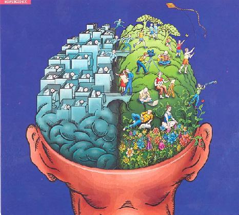 12 เทคนิคกันสมองเหี่ยว