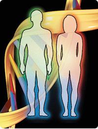 พบ ยีน ต้นเหตุชายโตเร็วกว่าหญิง แต่ส่งผลอายุขัยสั้นกว่า!