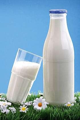 ดื่มนม ยืดอายุ