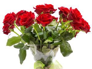 8 เทคนิครักษาดอกกุหลาบให้อยู่ได้นานขึ้น