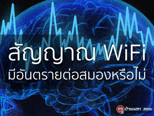 สัญญาณ WiFi มีอันตรายต่อสมองหรือไม่