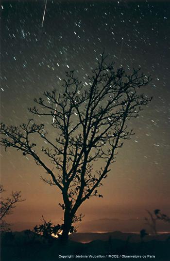 สถานที่นอนดู ฝนดาวตก ชัด ๆ 17-18 พ.ย.นี้