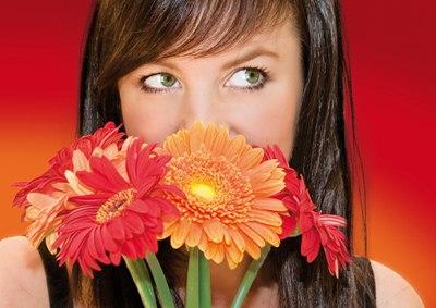 ดอกไม้ 5 ชนิด พิชิตโรค