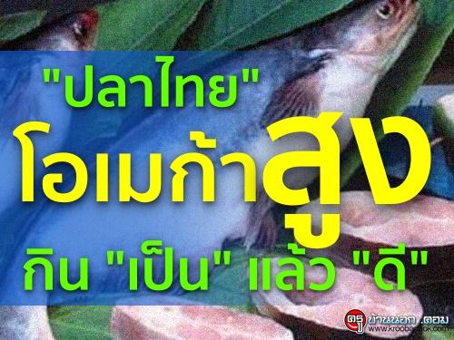 """""""ปลาไทย"""" โอเมก้าสูง กิน """"เป็น"""" แล้ว """"ดี"""""""