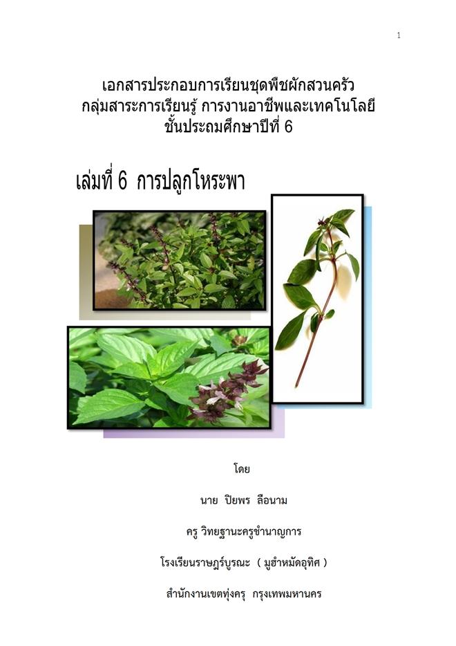 เอกสารประกอบการเรียนชั้น ป.6 ชุด พืชผักสวนครัว ผลงานครูปิยพร ลือนาม