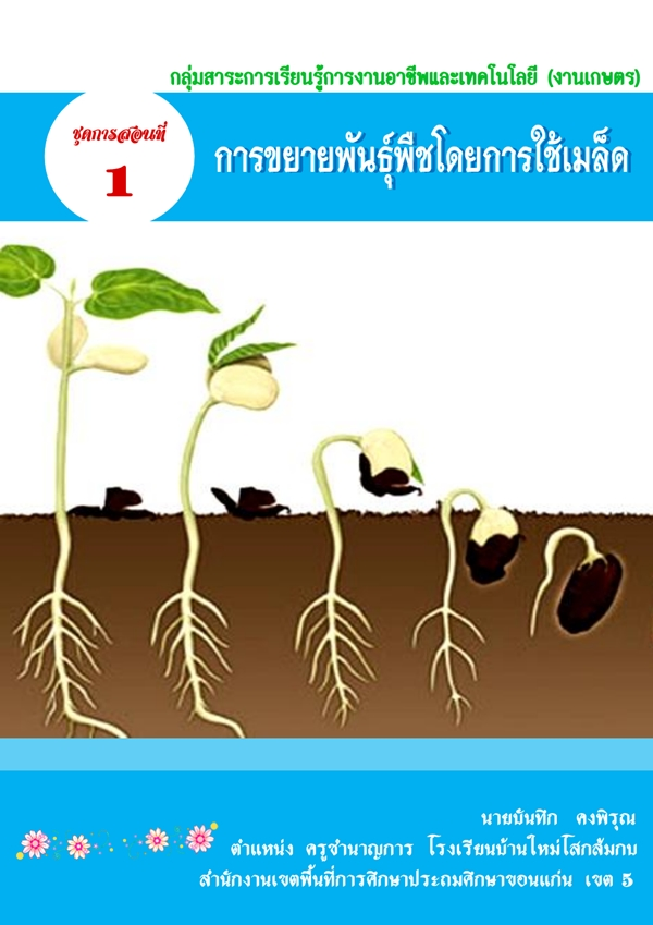 ชุดการสอน เรื่อง การขยายพันธุ์พืชโดยการใช้เมล็ด ชั้น ม.1 ผลงานครูบันทึก คงพิรุณ