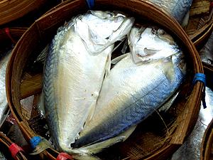 วิธีเลือกซื้อปลาทู