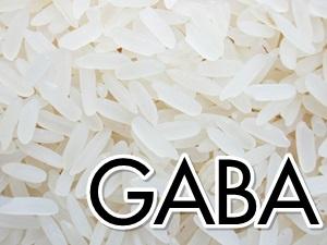 """""""กาบา (GABA)"""" สารอาหารในเมล็ดข้าว"""