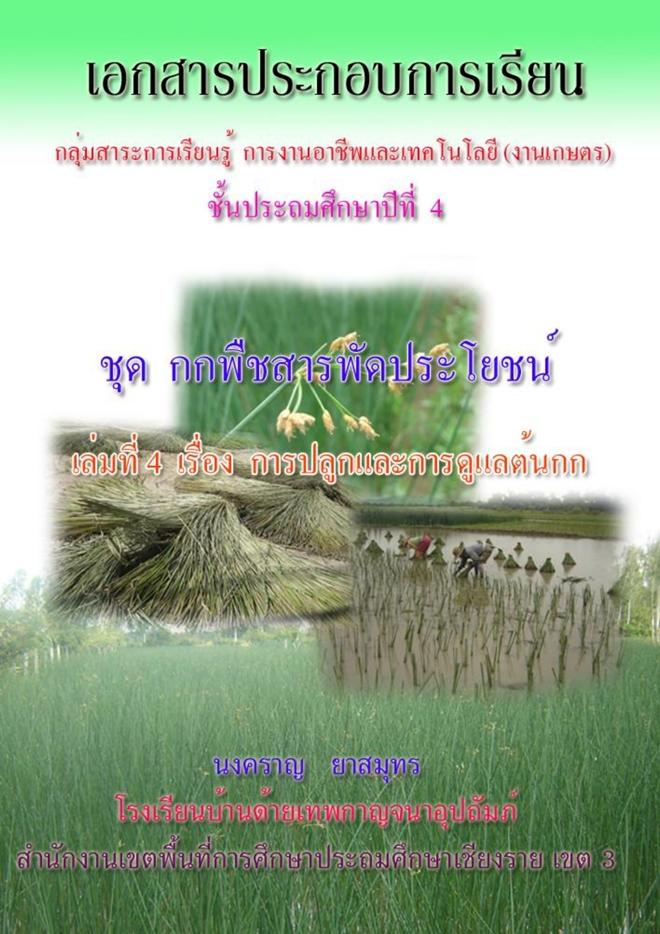 เอกสารประกอบการเรียน ชุด กก พืชสารพัดประโยชน์ (ป.4) ผลงานครูนงคราญ ยาสมุทร