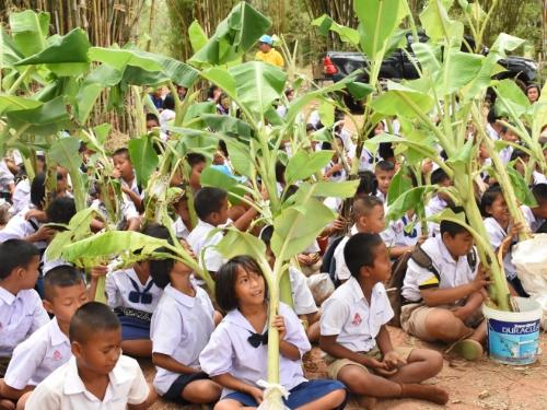 """ผู้ว่าฯ ชัยภูมิ นำนักเรียน สพป.ชัยภูมิ เขต 3 ปลูกป่าแบบ """"กล้วย กล้วย"""""""