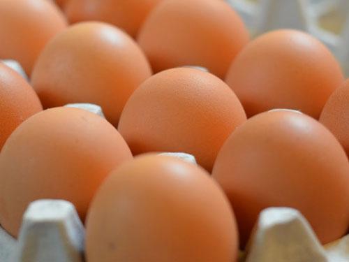 """""""หมอ"""" ชี้ ความเชื่อผิดๆ กินไข่ทุกวัน อันตรายเพราะคอเลสเตอรอล"""