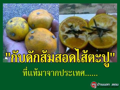 """""""กับดักส้มสอดไส้ตะปู"""" ที่แท้มาจากประเทศ......"""