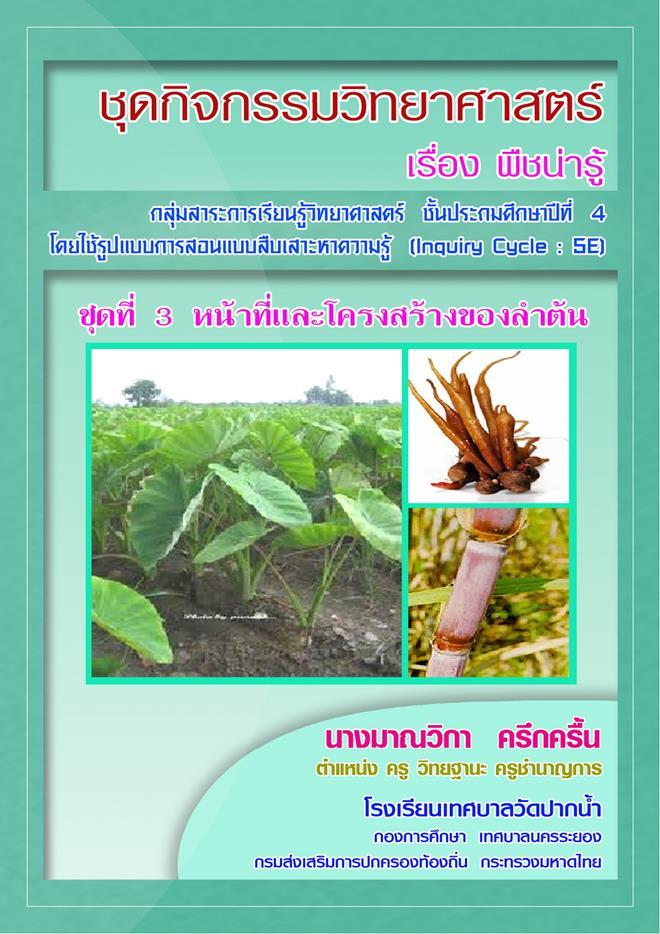 ชุดกิจกรรมวิทยาศาสตร์ ป.4 เรื่อง พืชน่ารู้ ผลงานครูมาณวิกา ครึกครื้น