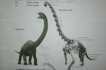 พบรอยเท้าไดโนเสาร์ อายุกว่า 200 ล้านปี