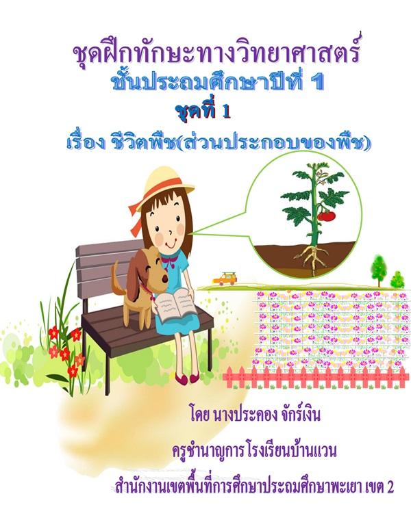 ชุดฝึกทักษะทางวิทยาศาสตร์ ป.1 เรื่อง ชีวิตพืช ผลงานครูประคอง จักร์เงิน