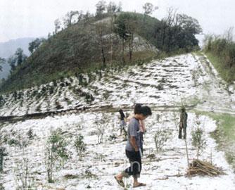 ดร.อาจอง เผยหิมะตก ในประเทศไทย ม.ค. ปีหน้า
